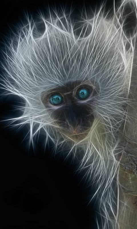 Fractal Monkey X