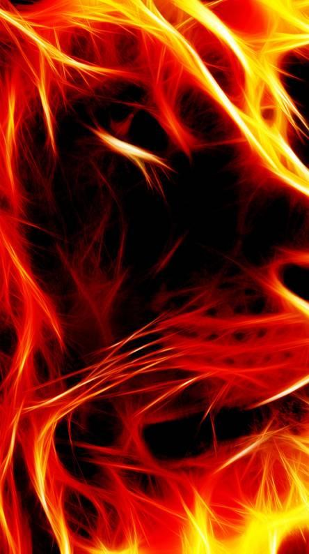 Flame Lion