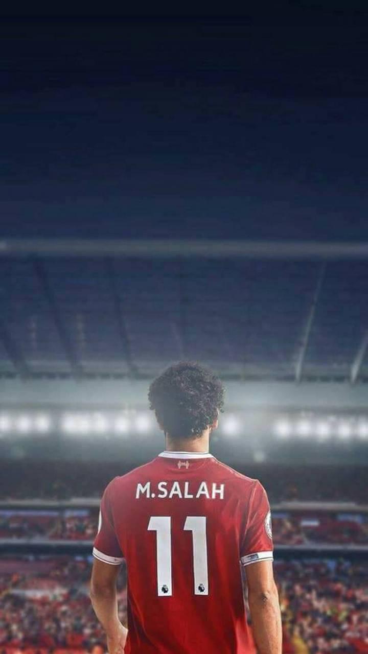 M SALAH