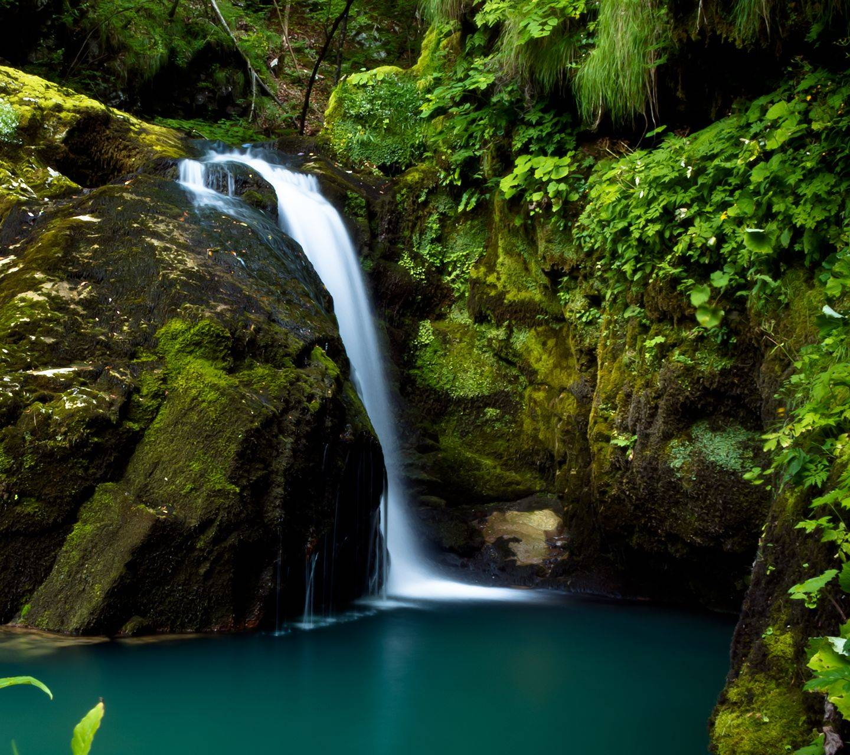 Beauty Full Nature