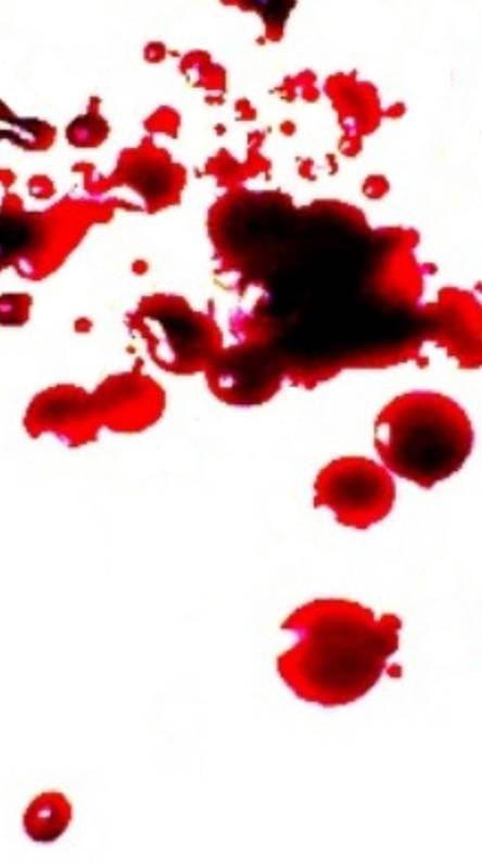 Blood Spat