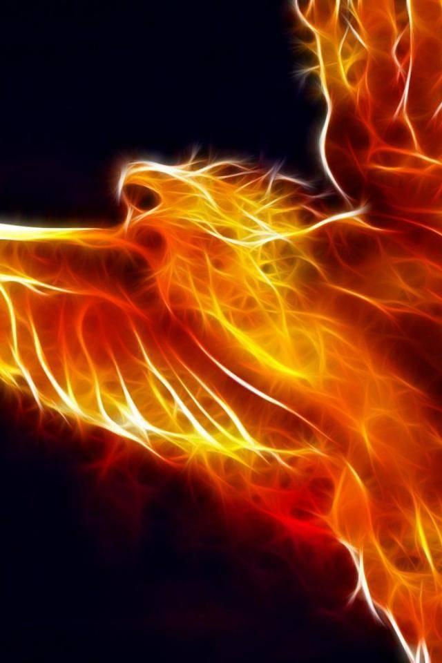 Fire Eagle Wallpaper By Djbattery2012 F0 Free On Zedge