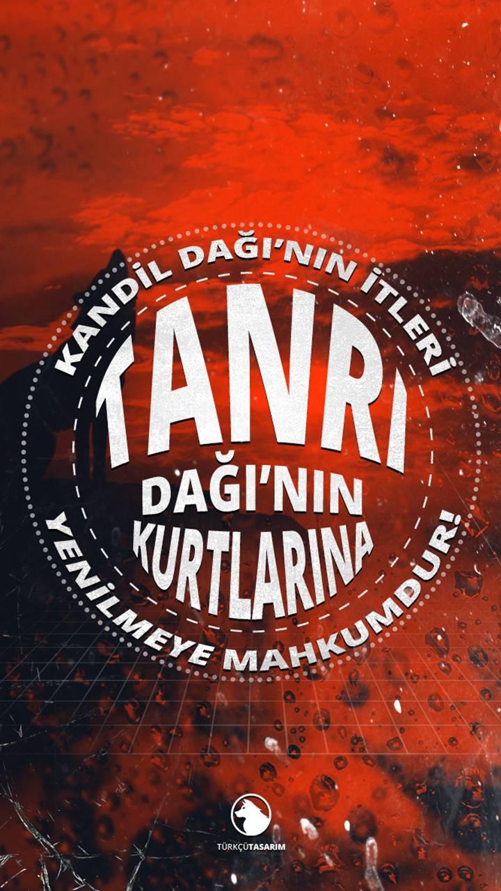TurkcuTasarim