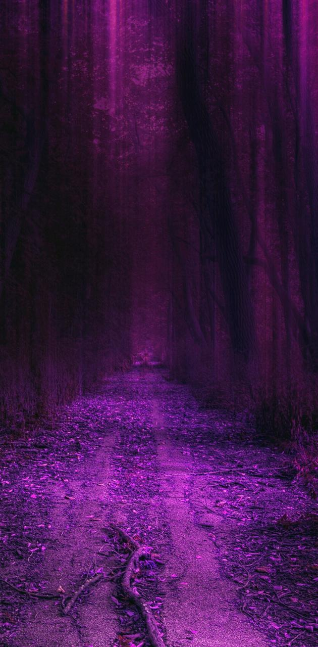 purple hd forest