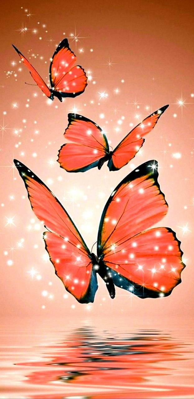 Butterfly Sparkles