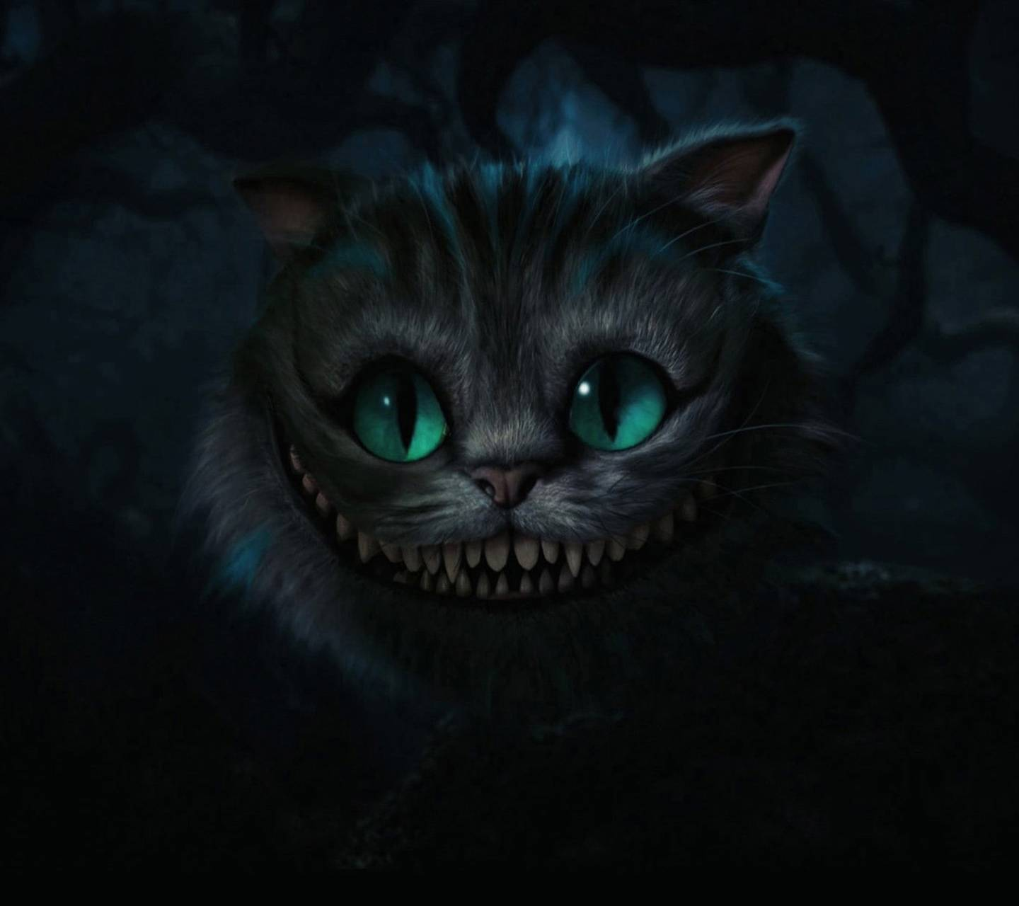 Horror Cat Hd