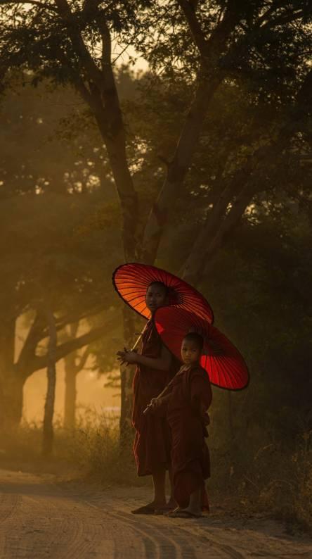 Monks at dawn