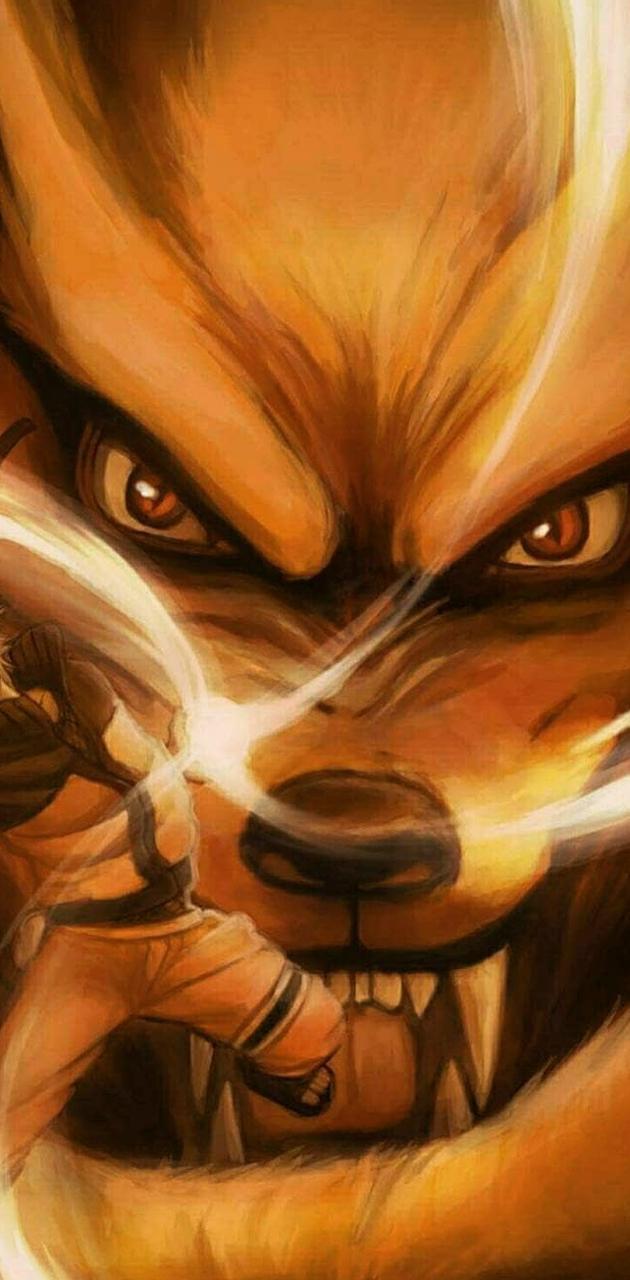 Naruto zorro