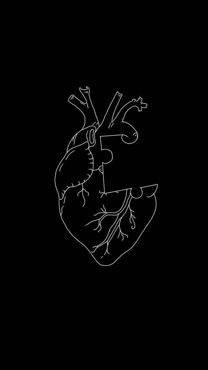 Heart Wallpaper By Wallpeep 05 Free On Zedge