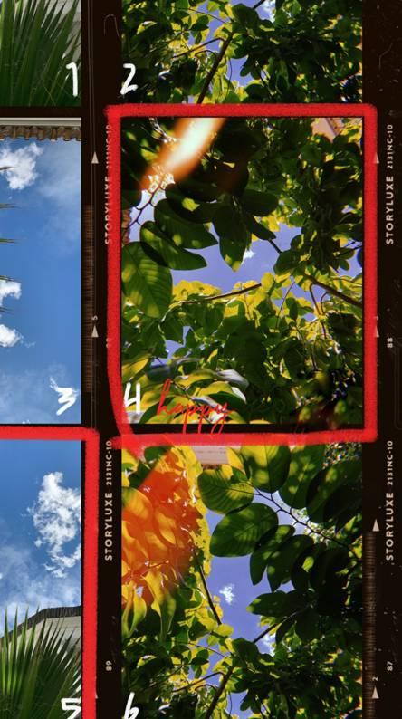 Kodak Wallpapers - Free by ZEDGE™