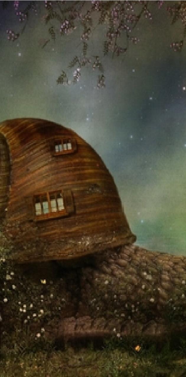 A Snail of a House