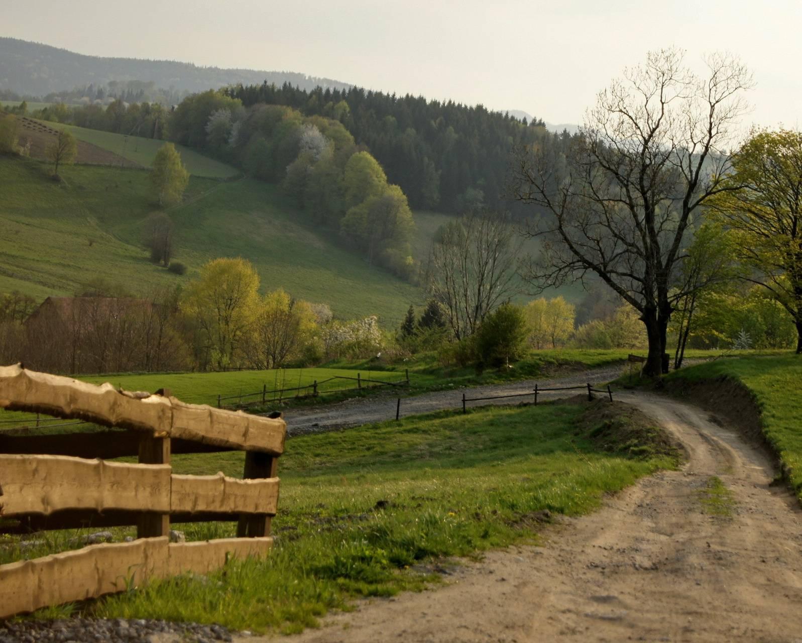 Scenic Meadows