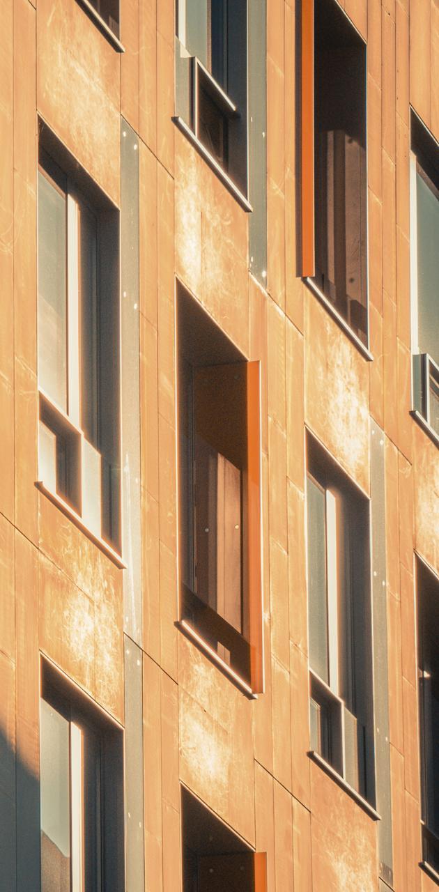 Windows sunshine