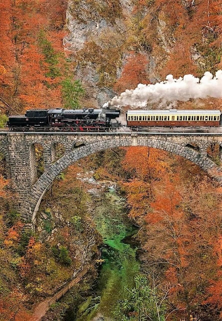 trainin bridge