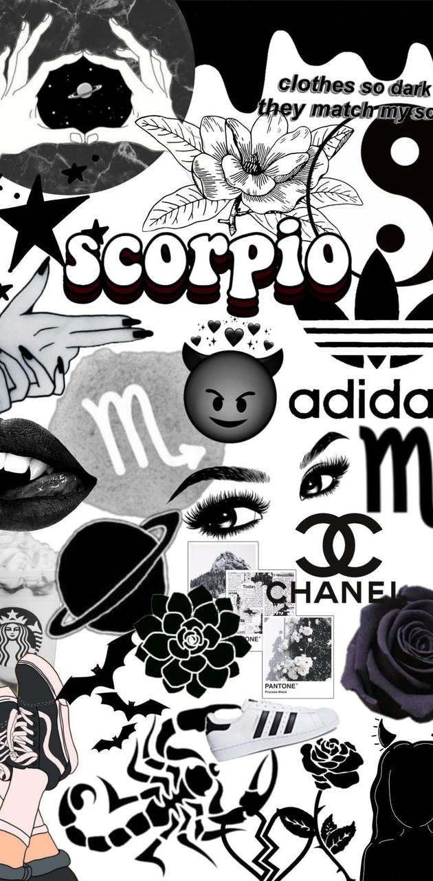 Scorpio black wallpaper by Mirabela Oana   baf20   Free on ZEDGE™