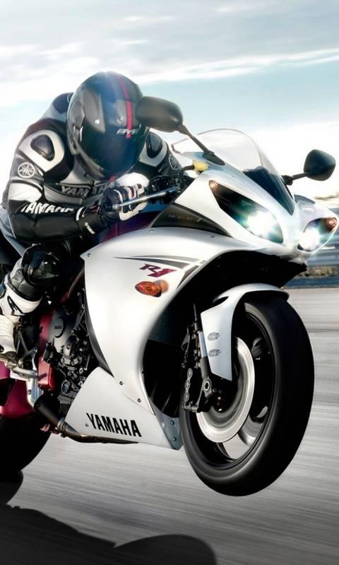Yamaha R1 Hd