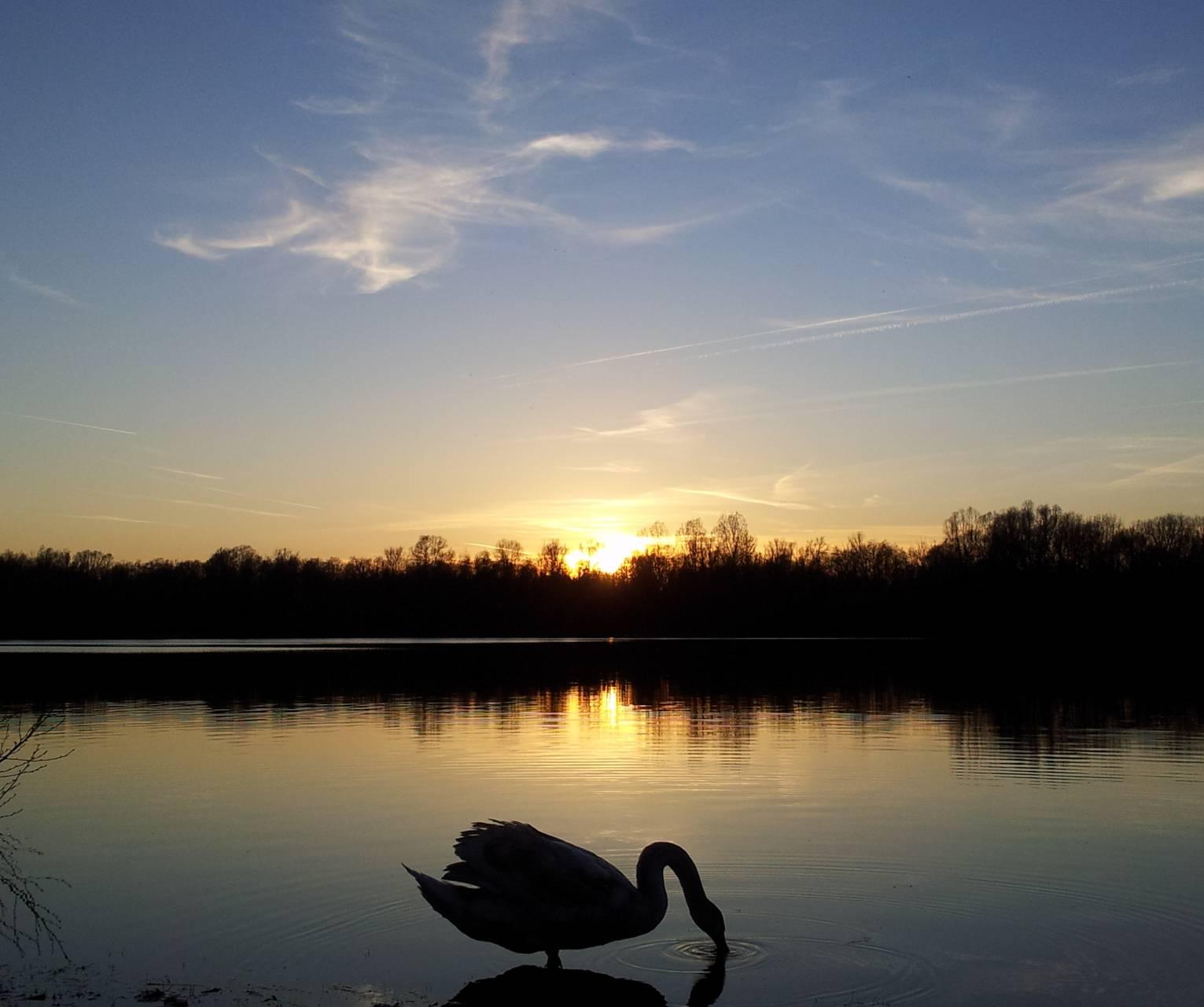 Eindhoven Sunset