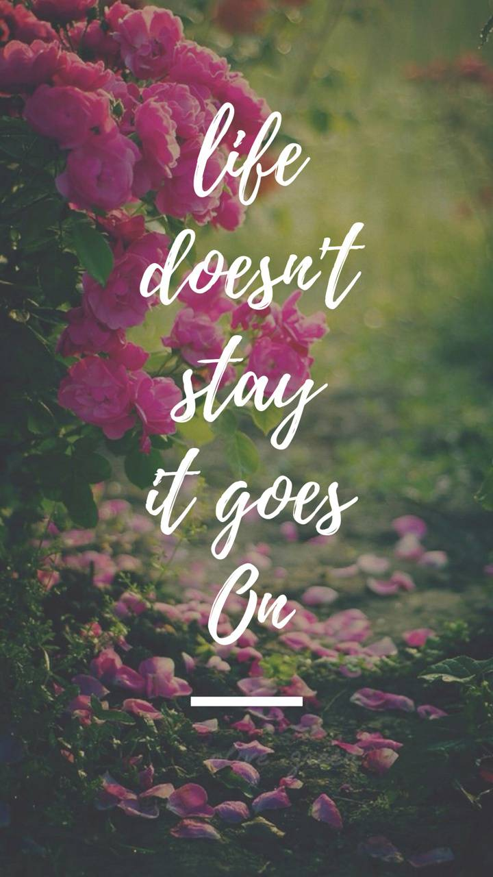 Life doesnt stay