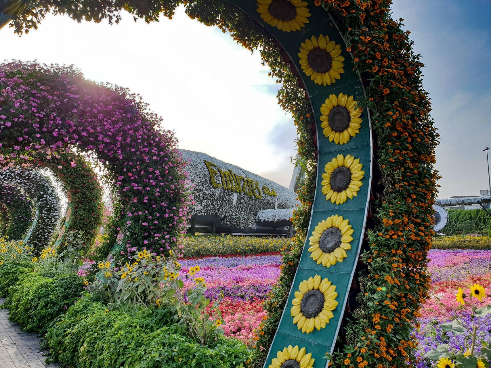 Flower Emirates