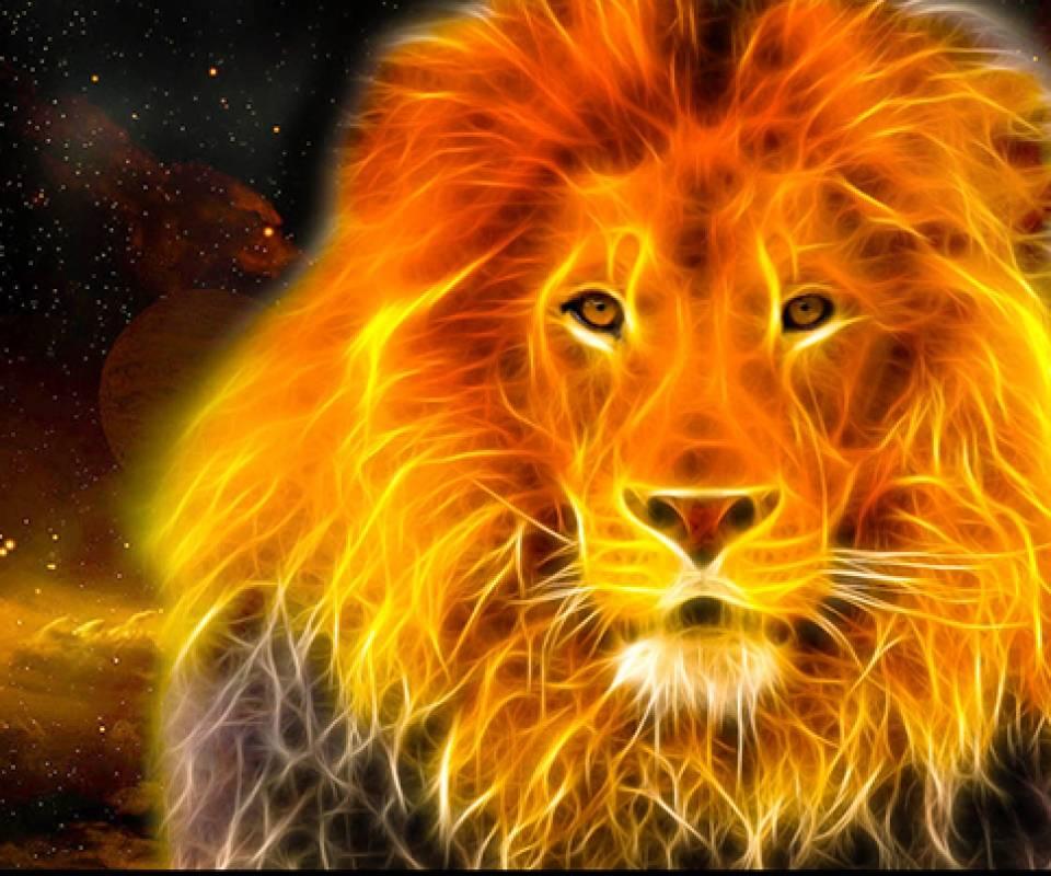 Fire Lion Wallpaper By Sphinxlars
