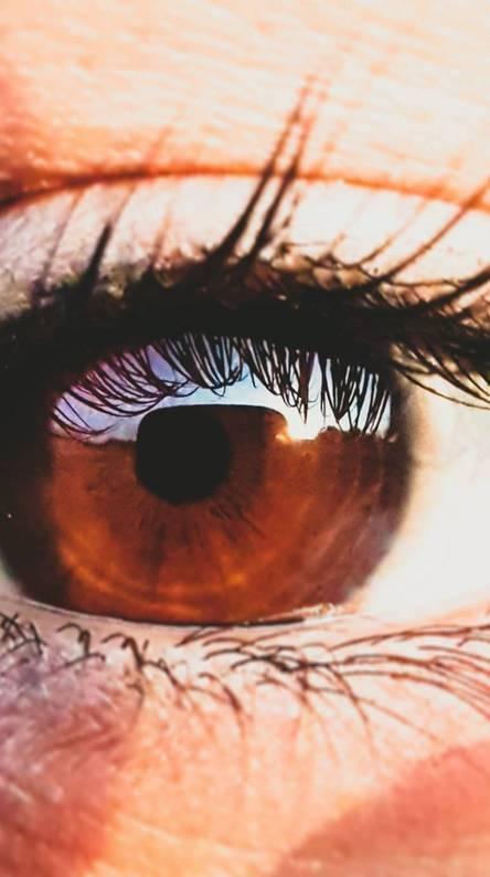 Eyes all way