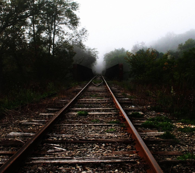 Trees Railroad Track