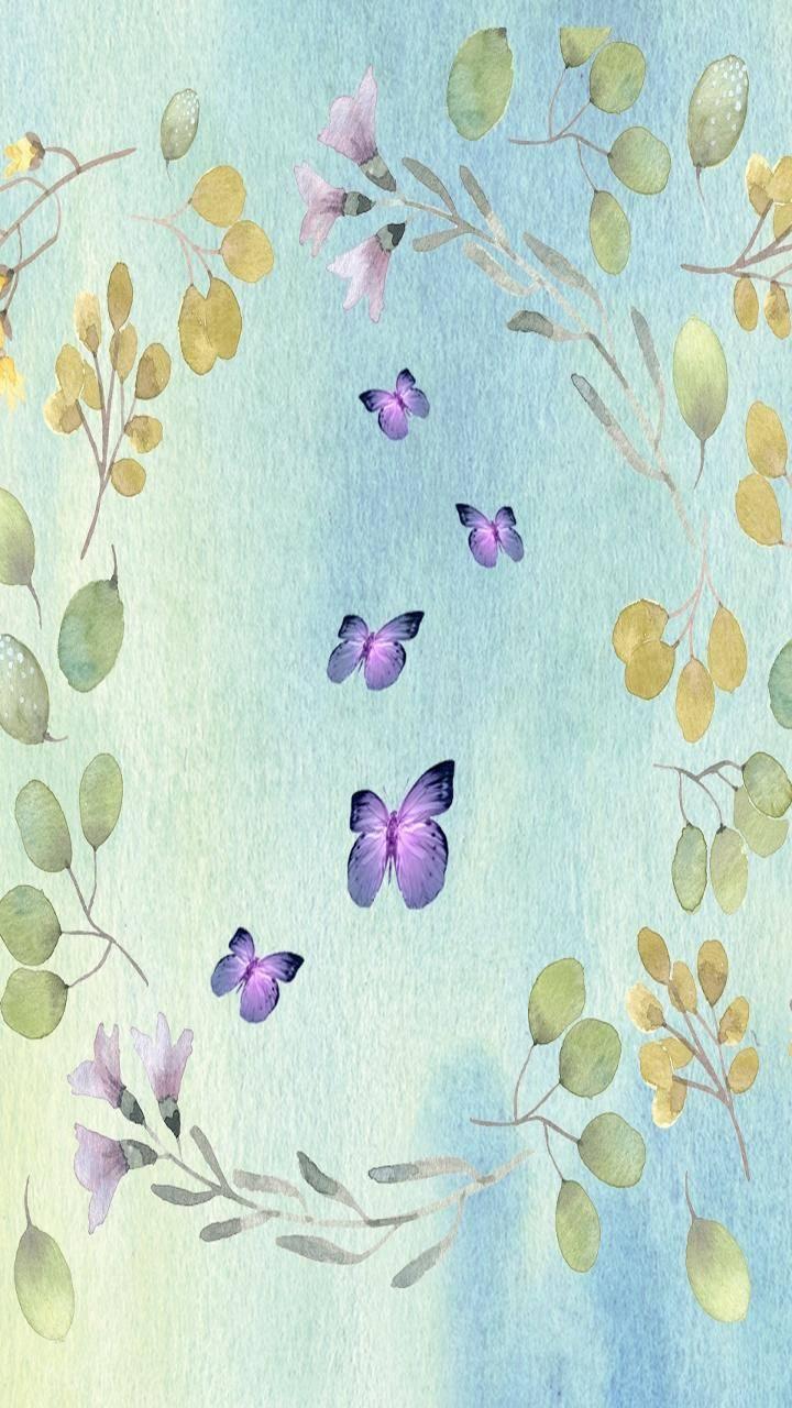 Butterflyhub