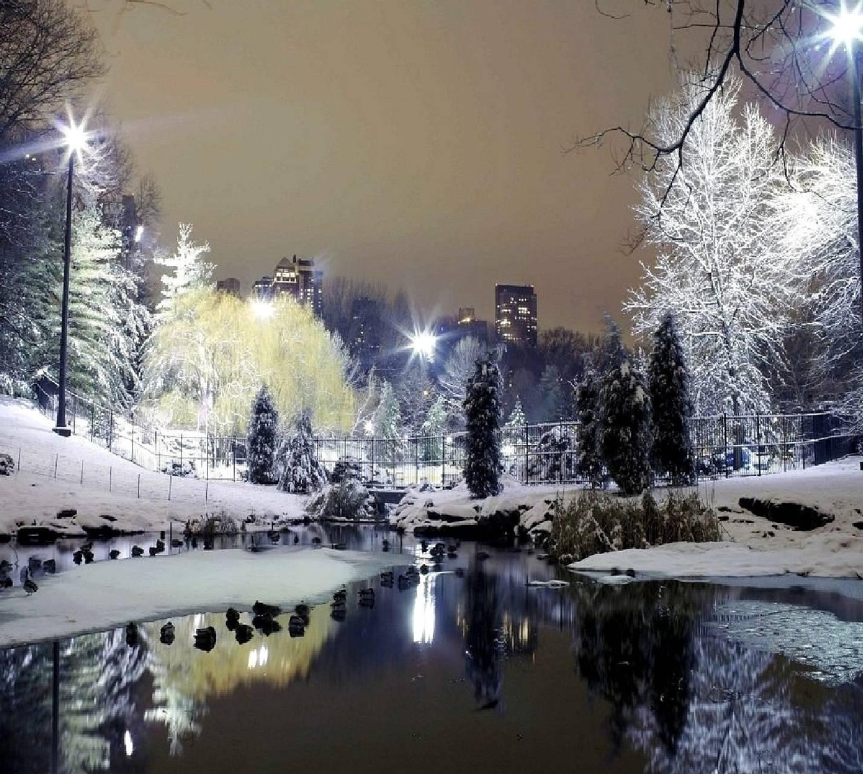 winter-------------
