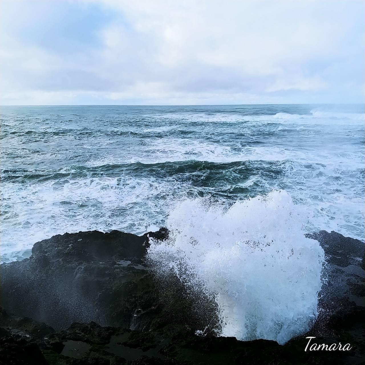 Oregon Coast Waves 1