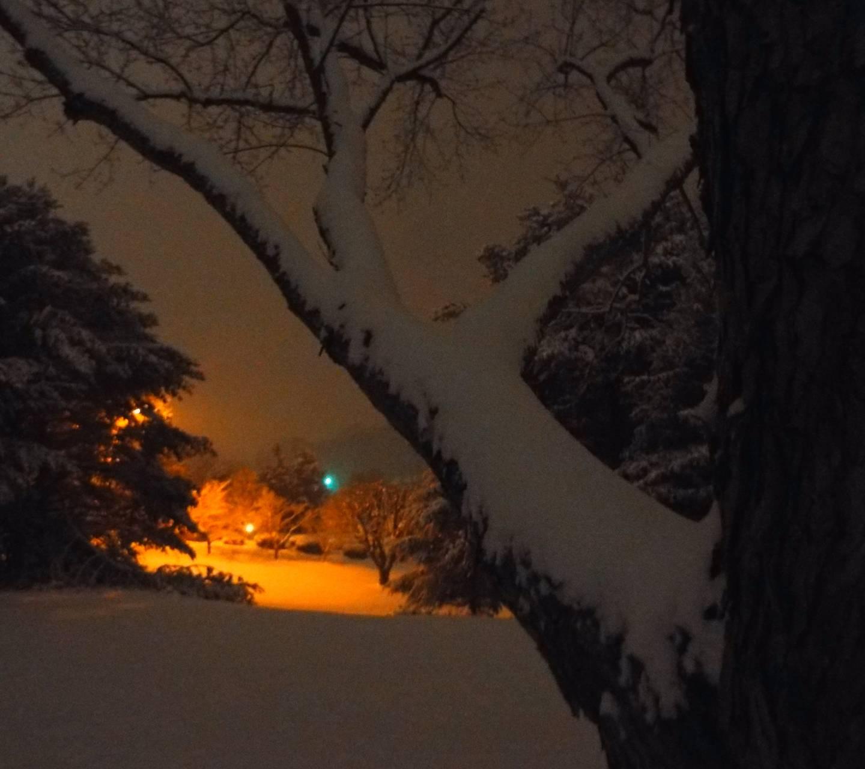 winters night