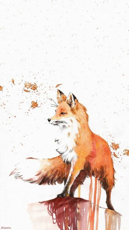 Fox Wallpapers Free By Zedge