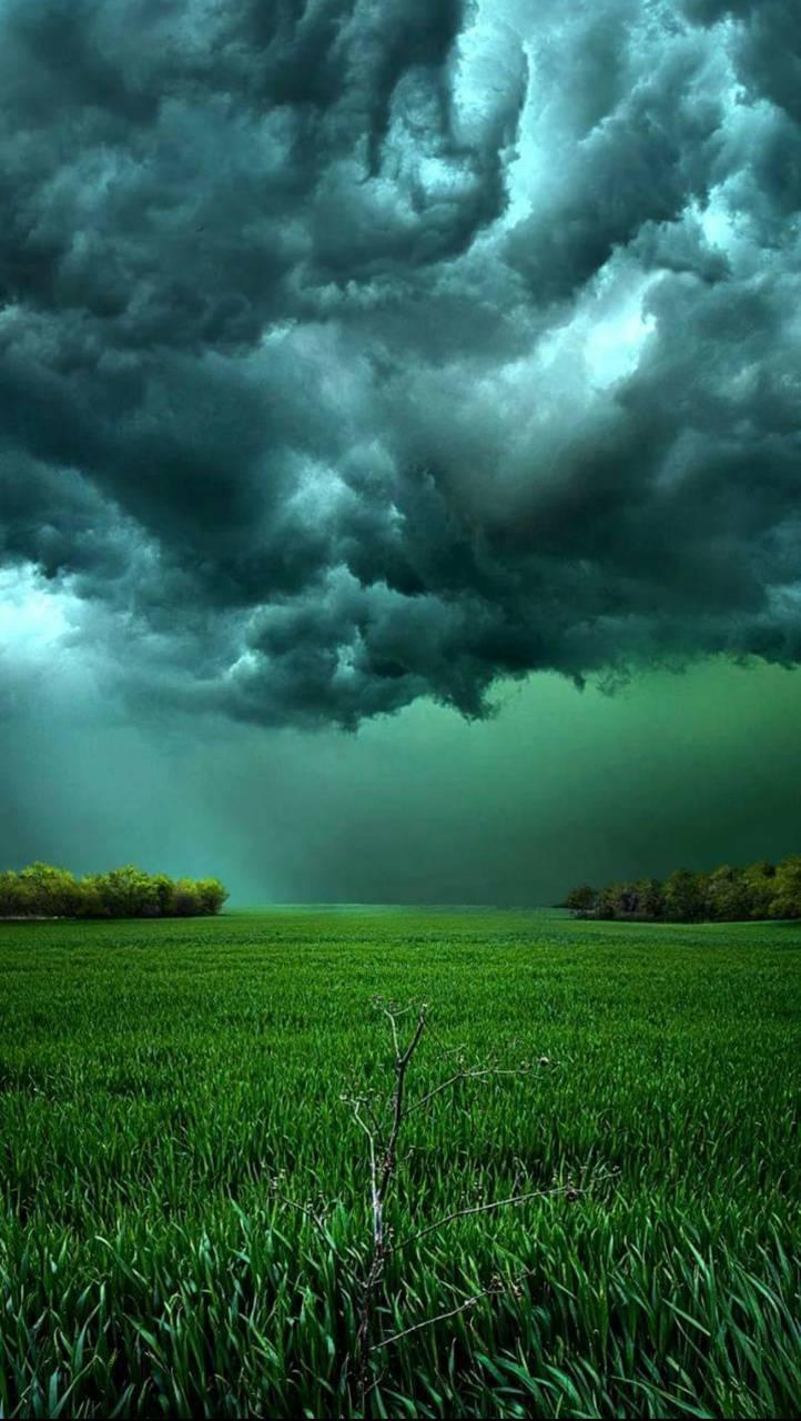 Quite Storme