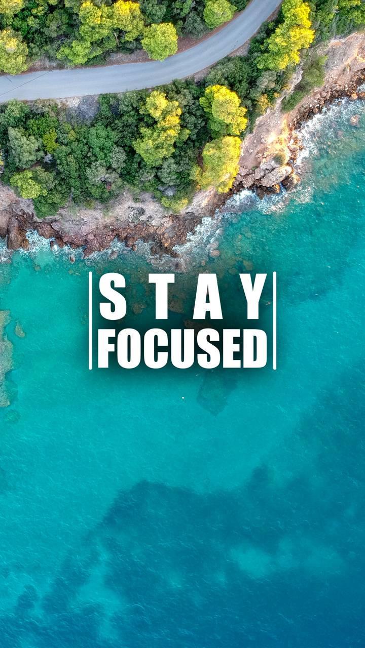 Stay Focused 7