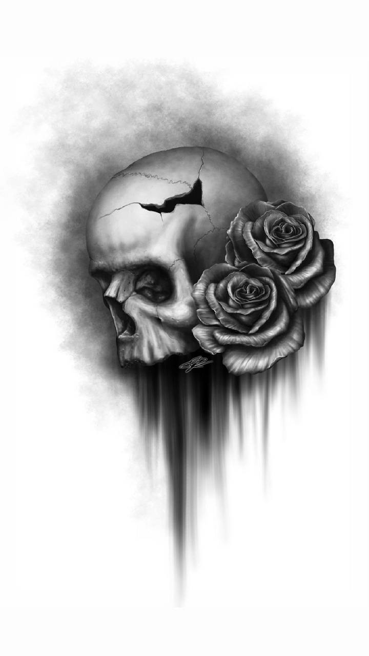 Skull Rose Wallpaper By Skate Boy F7 Free On Zedge