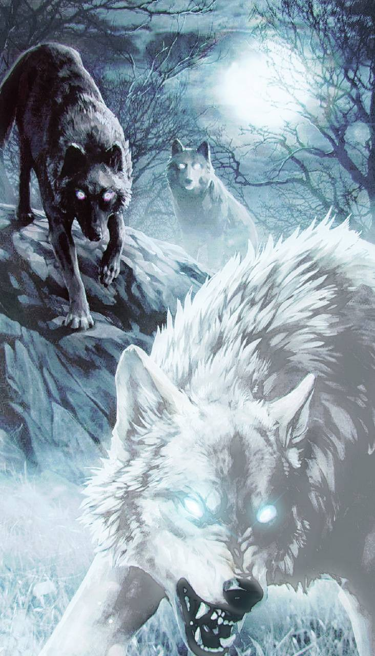 Wolves14