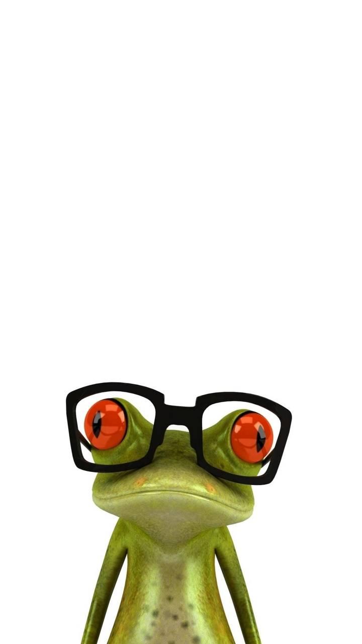Frog In Glasses