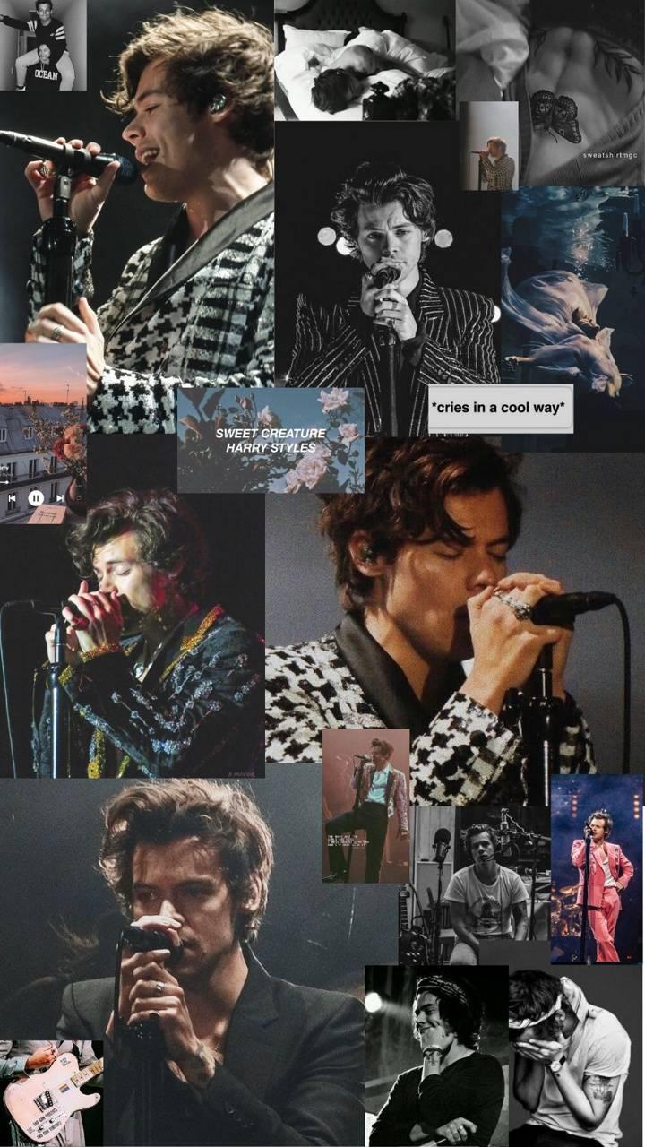 Harry styles bw