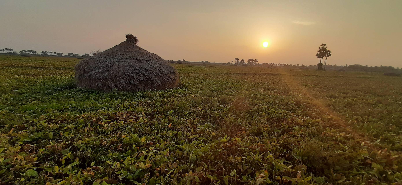 Sunset Of Village