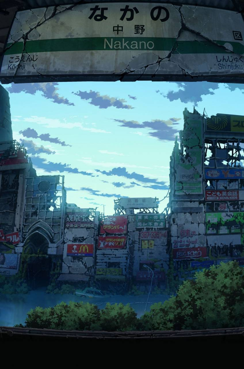 City 06