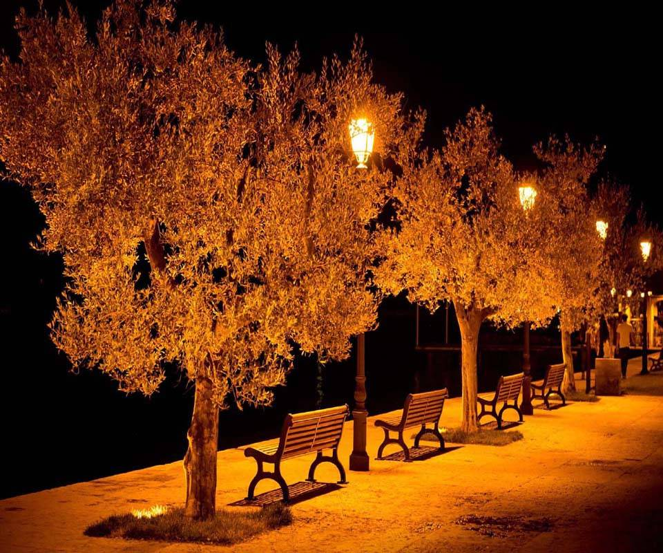 Benches light