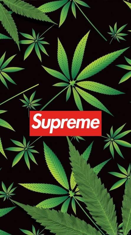 Supreme Wallpaper - WallpaperSafari  |Supreme Marijuana Backgrounds