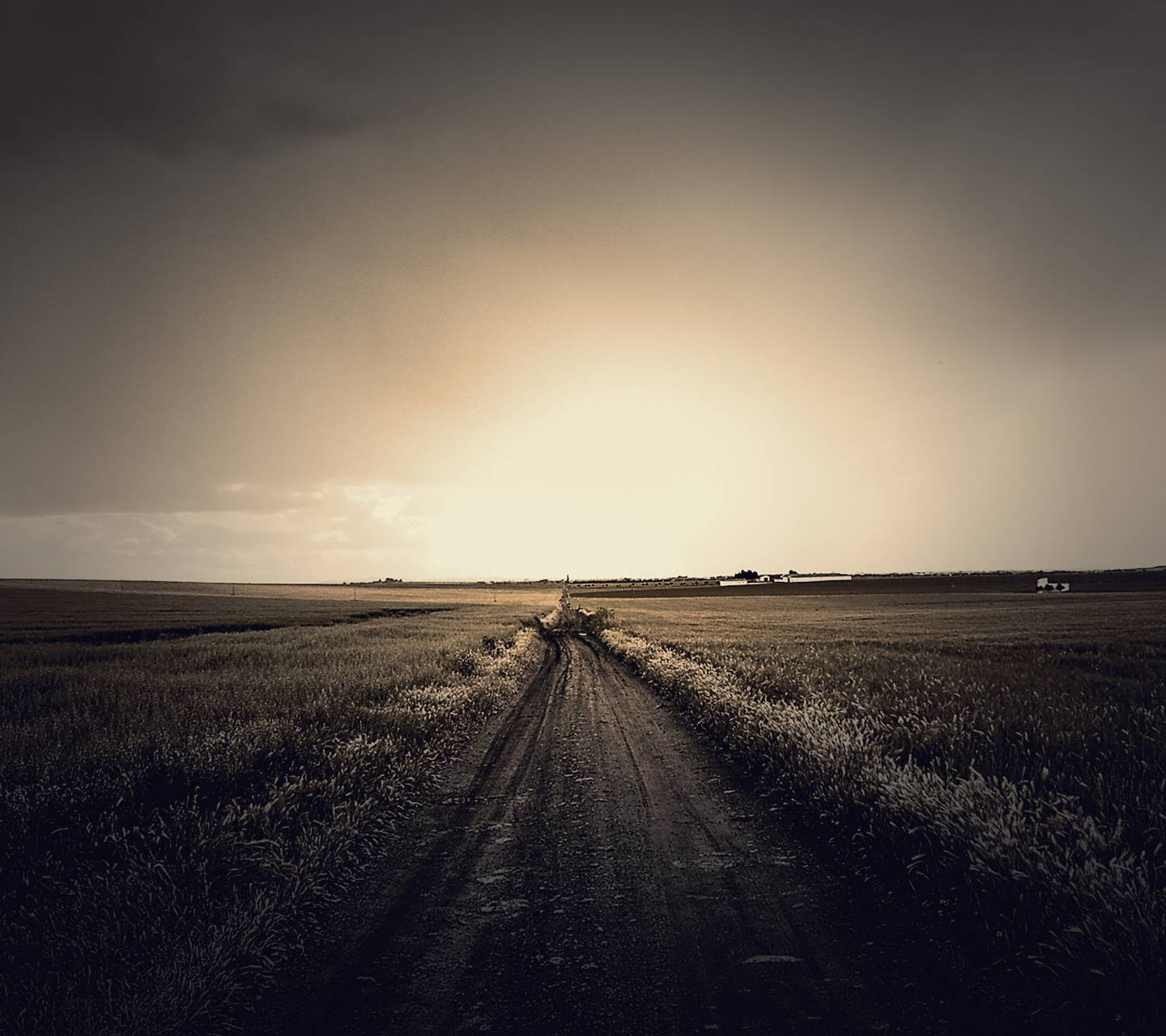 Dark Field Road Wallpaper By Templar990