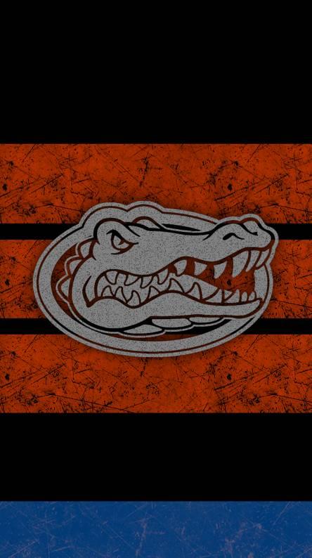Gators Grunge