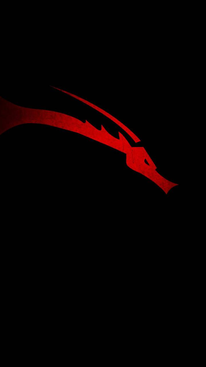 Kali Linux Wallpaper By Mbiedy 48 Free On Zedge