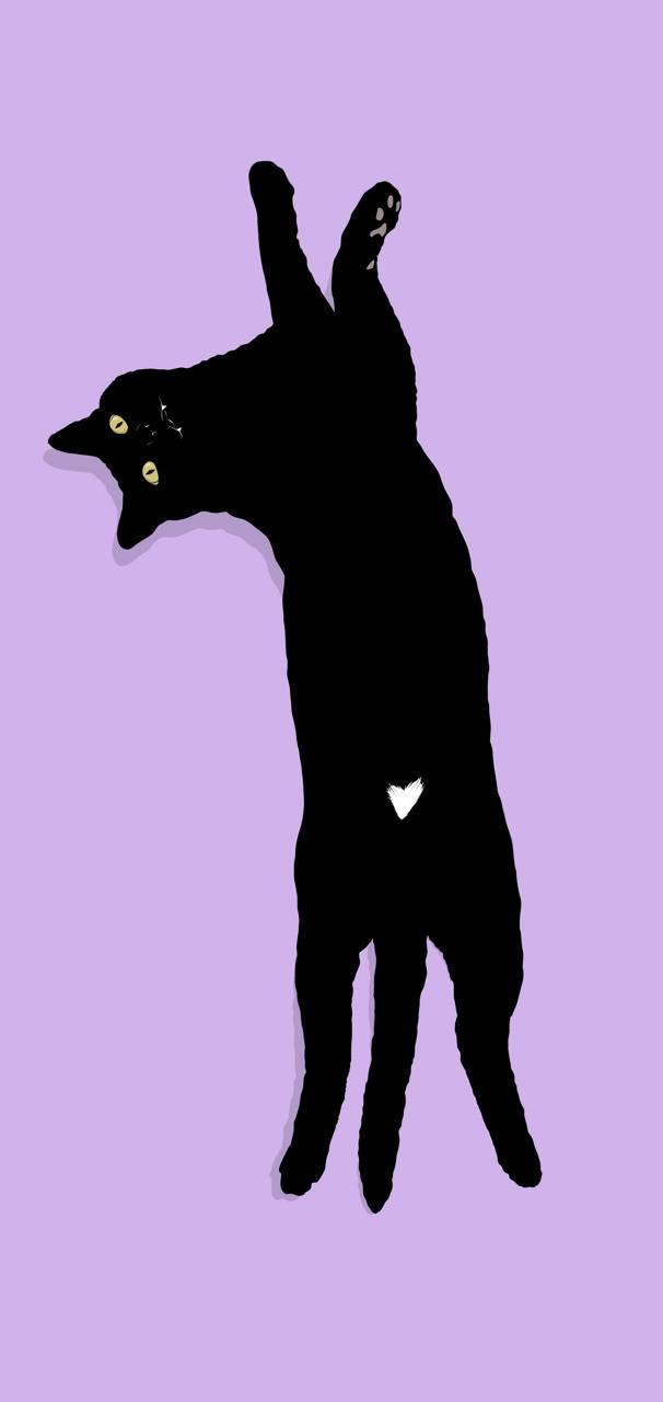 Black Cat Wallpaper By Snowhite Art 36 Free On Zedge