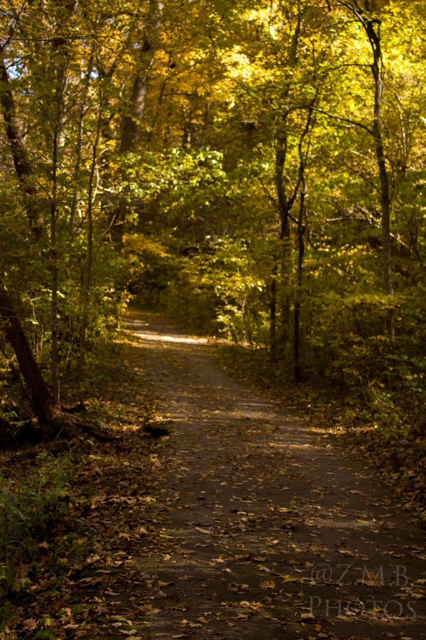 Fall time walk