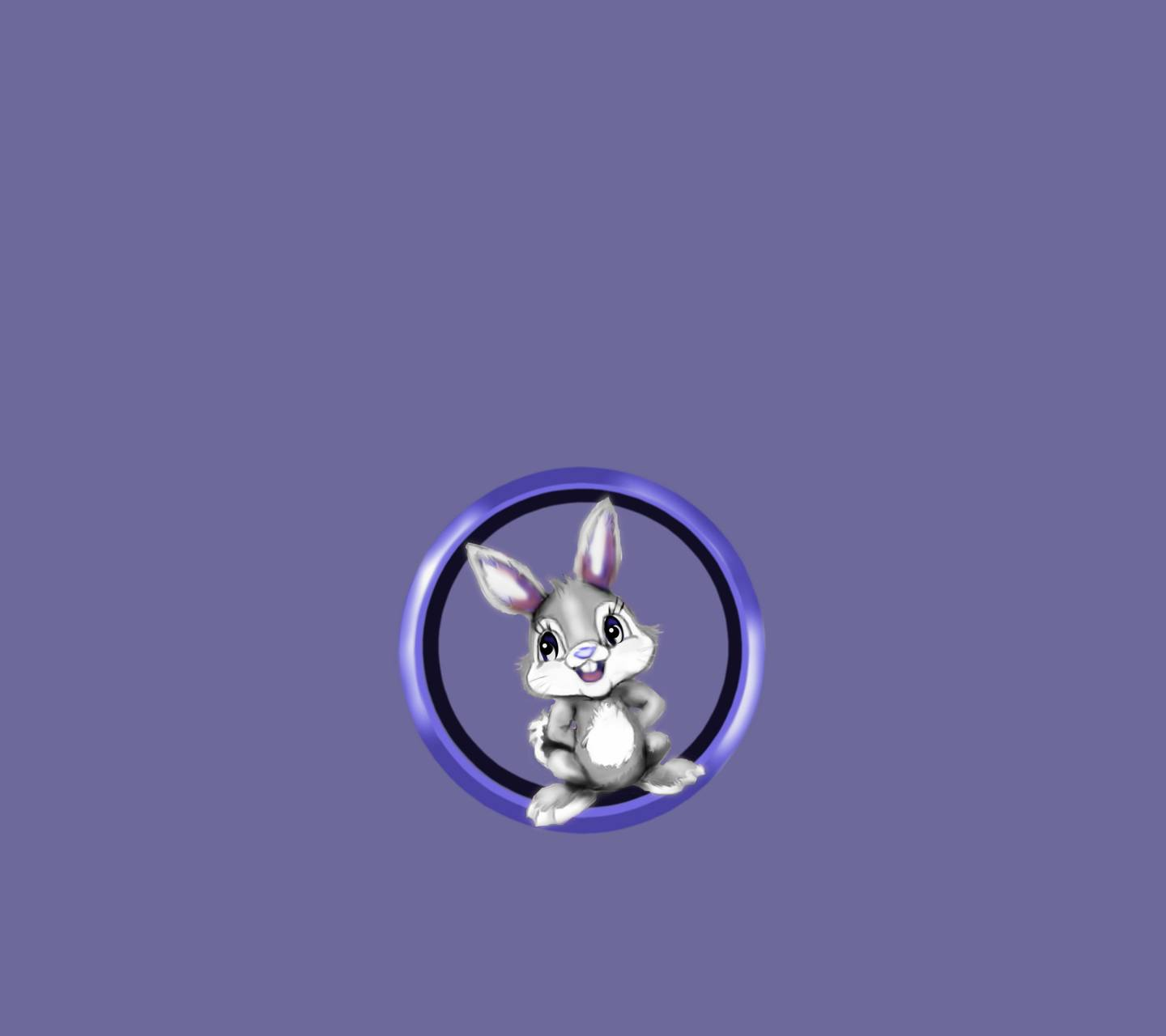 Wp Happy Rabbit 3