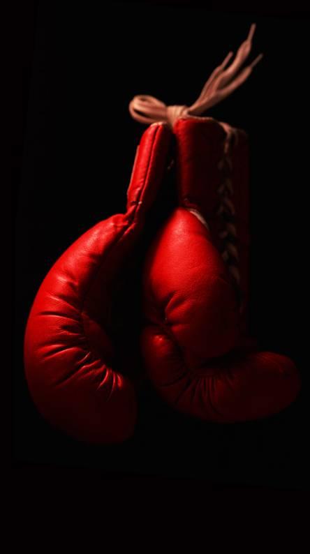 Everlast Boxing Gloves Wallpaper