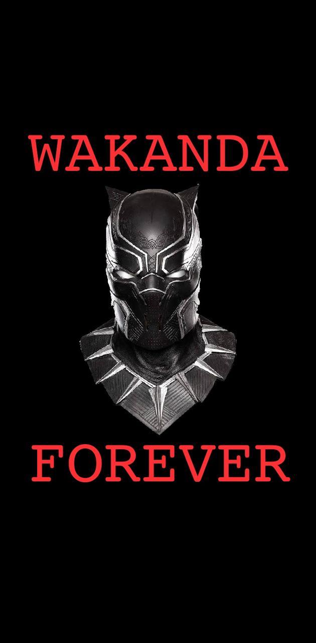 Wakanda forever 3