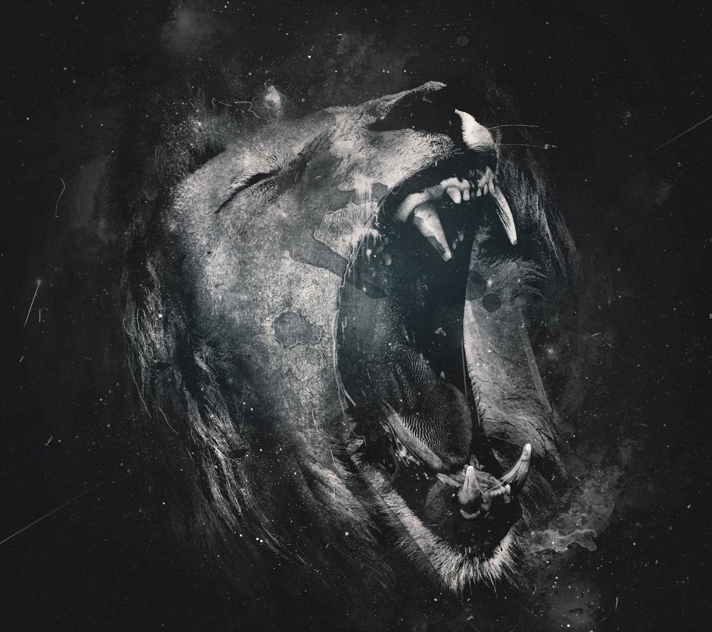 Lion Wallpaper By Lord Of Dark 09 Free On Zedge